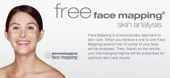 dermalogica-face-mapping